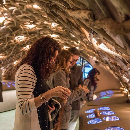 Caves du Louvre: wijnproeverij en museum