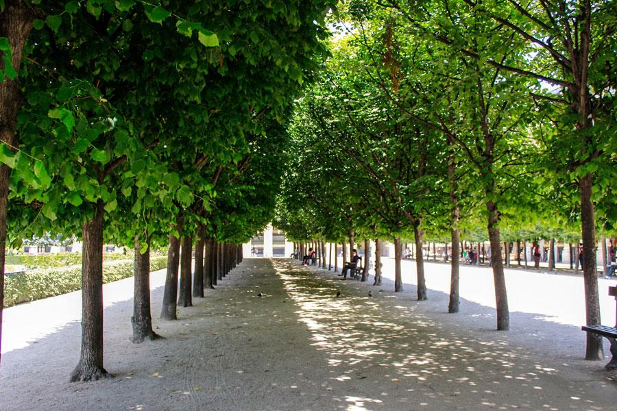 Jardin du Palais Royal 1e arrondissement Parijs