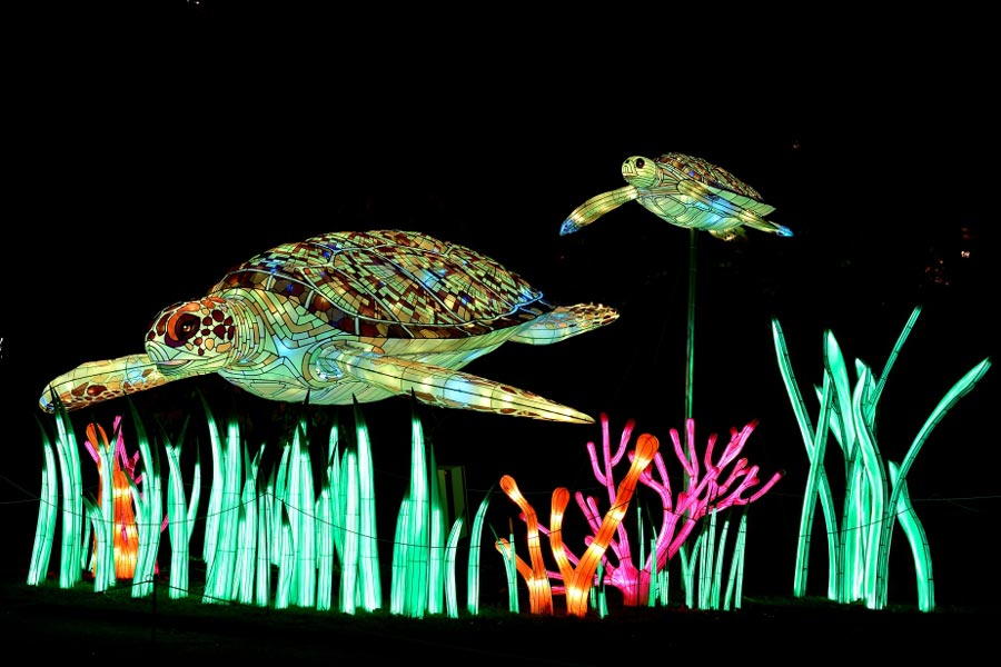 Lichtfestival in het Jardin des Plantes Parijs