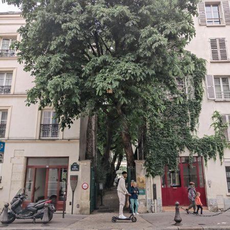 Musée de la vie romantique, met geheime binnentuin 😍